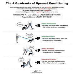 Operantno kondicioniranje