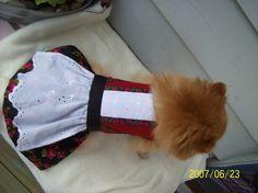 Hundebunad!! (hjemmesydd)