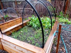 How to build coverings for your raised beds to keep them protected from cats/chickens & grow vegetables through the winter (via HipChickDigs)