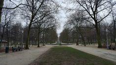 Jardin royale - Bruxelles