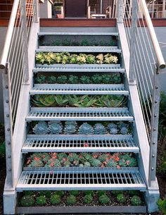 Urban Farming: Growing a Garden in Small Spaces | Skinny Mom | Tips for Moms | Fitness | Food | Fashion | Family