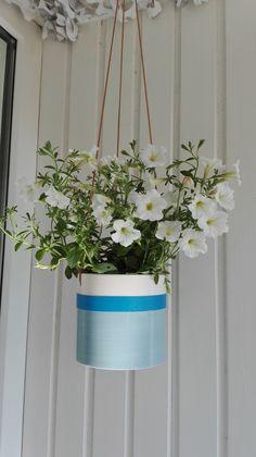 balkonkasten bepflanzen mit petunien und m nnertreu in blau und wei balkonpflanzen. Black Bedroom Furniture Sets. Home Design Ideas