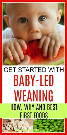 Get Started with Baby led Weaning