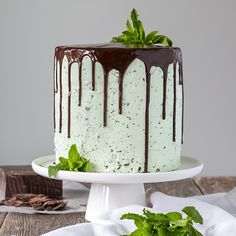 This Mint Chocolate Chip Cake is a mint lover's dream! Layers of decadent chocolate cake topped with a silky mint chip buttercream.