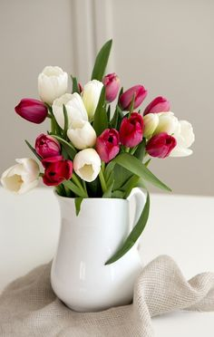 gorgeous cut white and also claret tulips in a white pitcher.  thank you, j