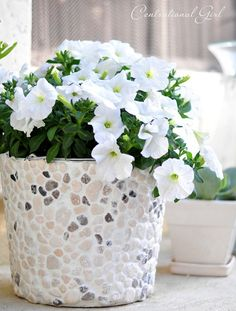 DIY Rock Covered Bucket - definitely want to try this with @Sharon Barrick!