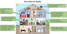 Best Air Purifier For Pets - Before you purchase your air purifier you need to make sure you are getting the best air purifier for pet odors and the best air purifier for odor elimination. Pet Odor Eliminator, Toy Dog Breeds, Cleaning Mold, Military Dogs, Pet Odors, Therapy Dogs, Kitchen Store, Household Cleaners