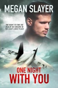 One Night With You by Megan Slayer