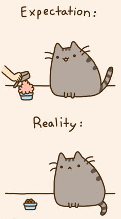 Expectation versus Reality. Pusheen cat. Lol. Gotta love Pusheen!