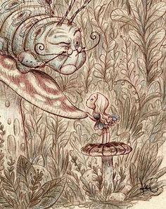 Alice and caterpillar....