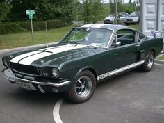 http://photo-voiture.motorlegend.com/high/ford-mustang-i-1964-73-shelby-gt350-7679.jpg