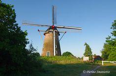 De Hernense molen in Hernen (Wijchen - Nederland) | by Pierino Smaniotto