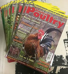Practical Poultry Magazine-Chicken-Ducks-Game-Goose-Quail-Rabbits-#46 to 57 2008 Pet Supplies:Poultry & Waterfowl #forcharity
