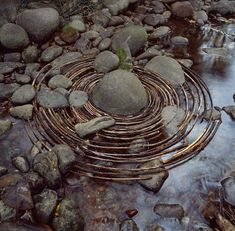 CURVED STICKS LAID AROUND A RIVER BOULDER. TOOK LONGER TO FIND THE STICKS THAN TO MAKE THE WORK. WOODY CREEK, COLORADO. 16 SEPTEMBER 2006. © ANDY GOLDSWORTHY