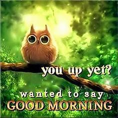 Here are 25 amazing good morning quotes to get your day started. Don't forget to send good morning wishes to a friend with one of our good morning quotes! Good Day Quotes, Funny Good Morning Quotes, Good Morning Funny, Good Morning Coffee, Morning Greetings Quotes, Good Morning Sunshine, Good Morning Picture, Good Morning Good Night, Morning Pictures