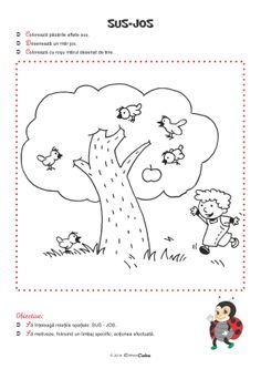 Fise de Lucru (Editura Caba) Kindergarten Worksheets, Worksheets For Kids, Preschool Activities, Projects For Kids, Diy Projects, Diy And Crafts, Crafts For Kids, Lily, Teaching