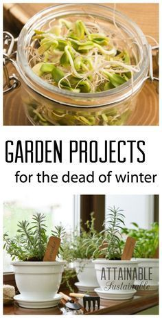 Winter garden ideas and projects to tackle during the off-season. Plan for the garden. Grow things. Build things. It's almost as good as digging in the dirt!