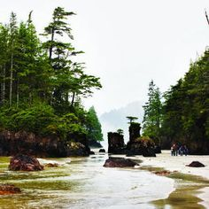 Vancouver Island - @Kimberley Kufaas: don't you have a shot like this?  Hope to head to SJB when we get home!