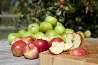 Apple pie smoothie recipe (applesauce, yogurt, cinnamon, nutmeg and vanilla!)