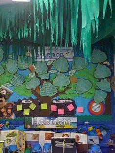 Fabulous habitats display by Katie Fletcher Year 4 Classroom, Ks2 Classroom, Primary Classroom, Science Classroom, Teaching Science, Classroom Themes, Teaching Tools, Class Displays, School Displays