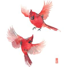 Spring Cardinals Watercolor Painting Fine Art Giclee Print Flying... ($22) ❤ liked on Polyvore featuring home, home decor, wall art, water color painting, red painting, bird home decor, watercolour painting and watercolor wall art