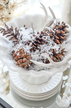HOLIDAY BLOG WALK 2016 - StoneGable sheds in bowl with pine cones and snow