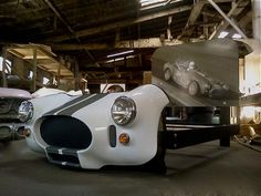 Shelby Cobra bed !!