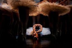 Swan Lake - Odetta, photography by Sofig Tamara černá