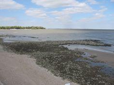 South shore of Lake Winnipeg Lake Winnipeg, Close Up, Rocks, Beach, Water, Outdoor, Gripe Water, Outdoors, The Beach