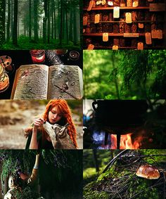 To be a Witch means that you worship the Earth as a mother, and to be a Green Witch means that heal the children of the Earth by bringing them back in communication with Her. The disciplines of the Green Witch are many; she listens, watches, learns, heals and most of all, she teaches.  http://www.susunweed.com/Article_Green_Witch.htm
