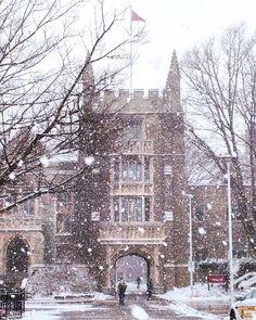 McMaster: Je ne sais pas à quelle école je veux aller, donc je pense à cette école comme une option.