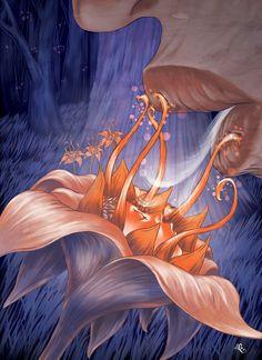La Flor de Lily-lo, Abraham Balcázar