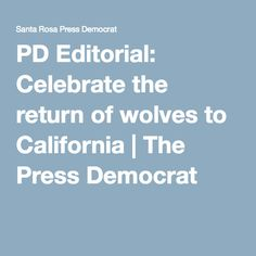 PD Editorial: Celebrate the return of wolves to California | The Press Democrat