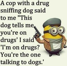 Funny Minion Pictures, Funny Minion Memes, Minions Quotes, Funny Jokes, Minion Sayings, Minion Humor, Minions Images, Funniest Jokes, Memes Humor