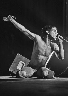 pinkfled:  Iggy Pop, 1977