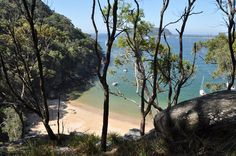 Ku-ring-gai Chase National Park, West Head - approaching Resolute Beach from the Coastal Track