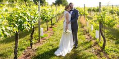 Bright and sunny shot of Terri and Drew at Keswick Vineyards. Thanks to White Birch Events and The Happy Couple Photography. Vineyard Wedding Venues, Wedding Images, Image Collection, Couple Photography, Got Married, Birch, Countryside, Romantic, Events