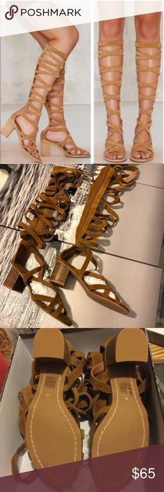 [Jeffrey Campbell] Gladiator Sandals Brand new with box. Selling because my calves are too small!!! 🙃 Jeffrey Campbell Shoes Sandals