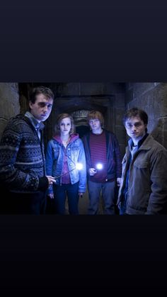 Harry Hermione Ron, Harry James Potter, Harry Potter Cast, Harry Potter World, Harry Potter Hogwarts, Slytherin Pride, Potter Facts, Himym, Diagon Alley