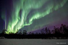 Einar Halvorsrud    Image taken:    Mar. 21, 2012    Location:    Alta, Norway