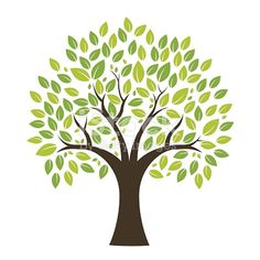 Choose from 60 top Tree stock illustrations from iStock. Find high-quality royalty-free vector images that you won't find anywhere else. Free Cartoon Images, Vector Verde, Family Tree Template Word, Reading Tree, Kids Room Murals, Tree Stencil, Bodhi Tree, Tree Images, Wall Drawing