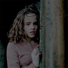 dicaprios:hermione granger is beautiful [2/?]