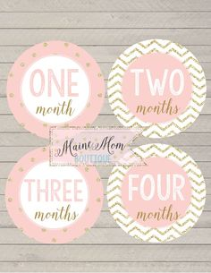 SALE Monthly Milestone Bodysuit Stickers Month Baby Girl Photo Prop Sticker Blush Pink Gold Glitter Nursery Decor Chevron Dots Baby Gift by MaineMomBoutique on Etsy https://www.etsy.com/listing/82186986/sale-monthly-milestone-bodysuit-stickers