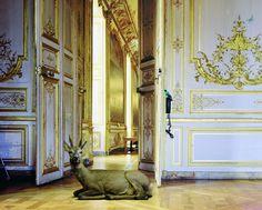 Karen Knorr - Fables: The Music Room 1 (Château de Chantilly)