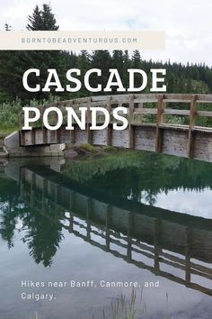 Cascade Ponds, Banff National Park | Cascade Ponds is an easy hike just  outside of the Town of Banff. The family friendly trail can handle  strollers and wheelchairs. #travelalberta #explorealberta  #banffnationalpark #kidfriendly #hiking #hikeswithkid Hiking With Kids, Travel With Kids, Family Adventure, Adventure Travel, The Great White, Wheelchairs, Banff National Park, Best Hikes, Day Hike