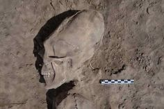 """thesleuthjournal: """"These Ancient Elongated Skulls Are NOT HUMAN """""""