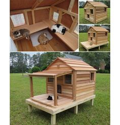 Cats Toys Ideas - Luxurious Outdoor Cat and Dog Homes For Your Furry Friends! get some yourself some pawtastic adorable cat shirts, cat socks, and other cat apparel by tapping the pin! - Ideal toys for small cats Niche Chat, Outdoor Cats, Cat House Outdoor, Outside Cat House, Outdoor Sheds, Outdoor Cat Shelter Diy, Outdoor Cat Enclosure, Cat Room, Cat Condo