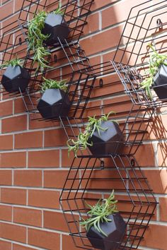 Make a stylish and inexpensive vertical garden using hexagon pot holders from Kmart. This Kmart hack creates a beehive shape by clustering several planters together. Fill with your favourite plants and watch them grow through the wires over time. Here are all the steps to create this outdoor feature for your home >>