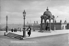 Dublin Street, Dublin City, Old Pictures, Old Photos, Dublin Ireland, Queen Victoria, Old School, Taj Mahal, Past