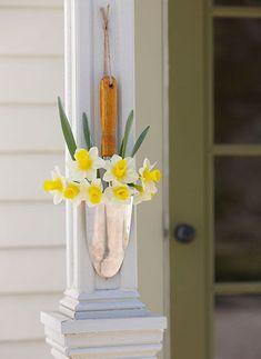 Narcissus Tete a Tete Ceramic Sausage Dog Indoor Planter